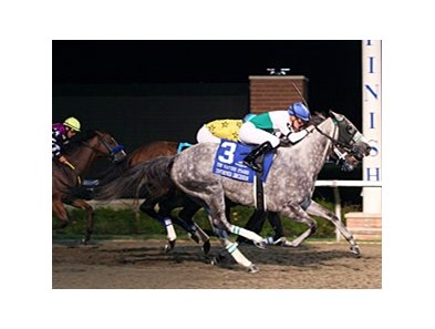 Informed Decision takes the Presque Isle Downs Masters in the final strides.