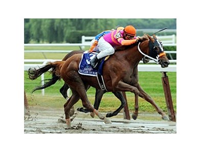 "2011 Belmont Stakes winner Ruler On Ice<br><a target=""blank"" href=""http://www.bloodhorse.com/horse-racing/photo-store?ref=http%3A%2F%2Fpictopia.com%2Fperl%2Fgal%3Fprovider_id%3D368%26ptp_photo_id%3D9561961%26ref%3Dstory"">Order This Photo</a>"