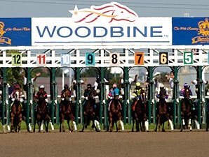 Significant Increases in Woodbine Handle