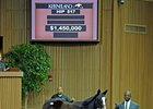 A yearling Street Sense filly brought $1,450,000 during the second session of the Keeneland January horses of all ages sale.