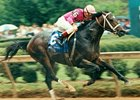 Rockamundo won the 1993 Arkansas Derby at 108-1 odds.
