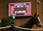 Hip #517, Street Sense filly, brought $1.45 million at the Keeneland January horses of all ages sale.