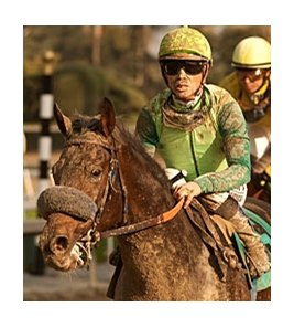 Garrett Gomez, shown aboard Tiz a Minister, won both divisions of the California Breeders Champion Stakes.