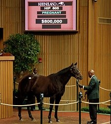 Stonestreet Purchases Supreme for $800,000