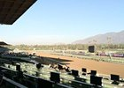 Perfect Weather for Breeders' Cup Saturday