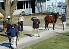Larger Keeneland January Sale Begins Monday