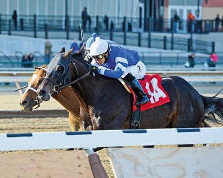 Entrymates Romansh and Long River ran one-two in the $150,000 Grade III Excelsior Stakes at Aqueduct Racetrack, the winner surging back after being headed by his fellow Godolphin-owned rival.