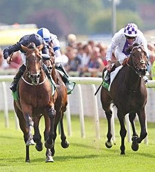 'War' Springs International Upset at York