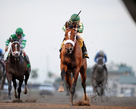 Mucho Macho Man, who ran in all three Triple Crown races previously before getting a freshening, started off his 4-year-old campaign in promising fashion by scoring over six fellow Florida-breds in the $400,000 Sunshine Millions Classic Stakes January 28, 2012 at Gulfstream Park.