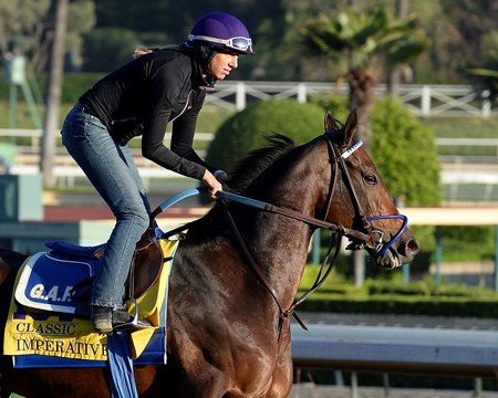 Caption:  Imperative