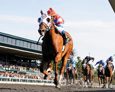 Groupie Doll and jockey Rajiv Maragh capture the Thoroughbred Club of America Stakes at Keeneland Race Track.