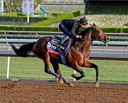 Caption:  Secret Circle