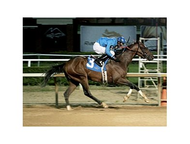 Romance Argentino will try to sweep starter series June 8 at Mountaineer.