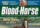 New Sires of 2013
