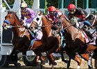 2012 Breeders' Cup World Championships - Day 2