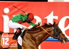 Dubai World Cup Day 2013