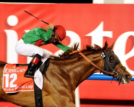 Animal Kingdom crosses the finish line in the Dubai World Cup.