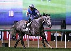 Solow leaves the competition behind in the Dubai Turf.