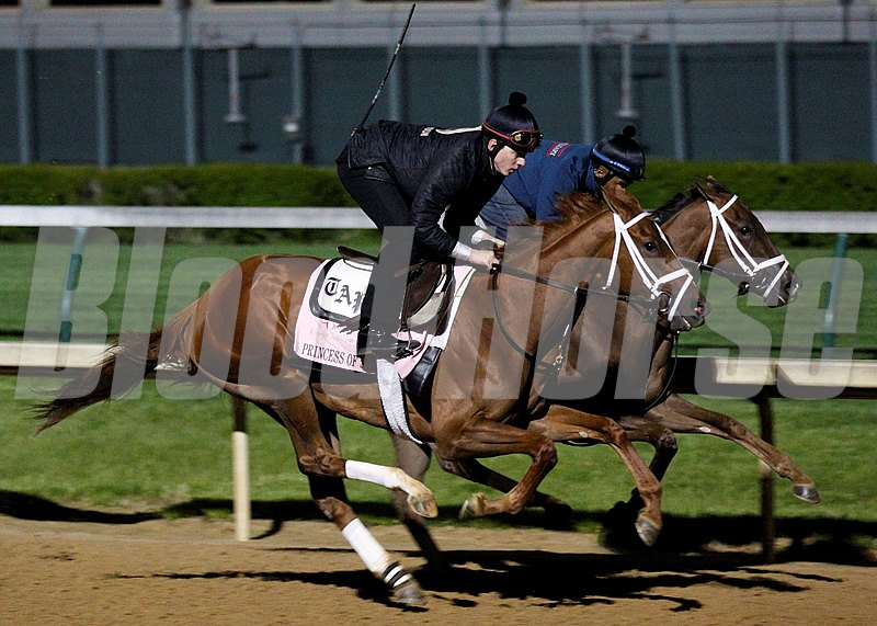 Princess of Sylmar works at Churchill Downs in preperation for the 2013 Kentucky Oaks.