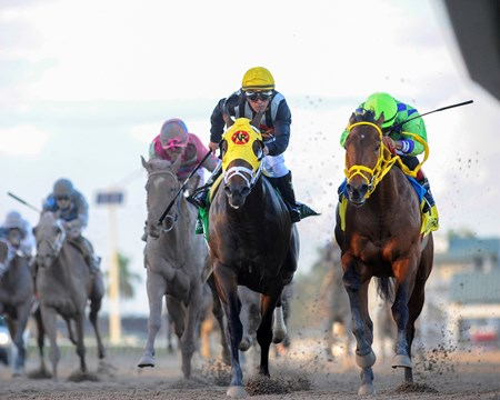 Though relatively early on the Derby trail, it's unlikely there will be another two-way duel as good as the one in the $415,000 Grade II Besilu Stables Fountain of Youth Stakes, won by Wildcat Red over General a Rod at Gulfstream Park. The two colts fought all the way on the front end through fast fractions and settled matters down the long Gulfstream Park stretch.