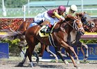 "Discreet Cat overtakes Candyman E to win at Gulfstream.<br><a target=""blank"" href=""http://photos.bloodhorse.com/AtTheRaces-1/at-the-races-2013/27257665_QgCqdh#!i=2353844854&k=3fXCpXg"">Order This Photo</a>"
