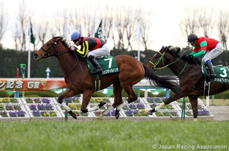 Gentildonna (by Deep Impact, out of Donna Blini by Bertolini) wins the Nikkan Sports Sho Shinzan Kinen Jan. 8, 2012.