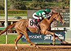 Stellar Wind rolls to victory in the Santa Ysabel.