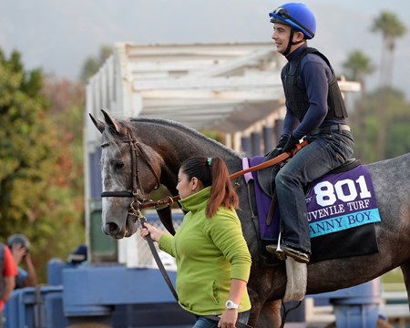 Caption:  Danny Boy