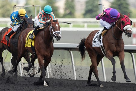 Jockey Gary Boulanger guides Seffeara to victory in the $150,000 Clarendon Stakes at Woodbine Racetrack.
