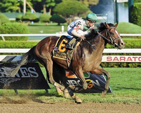 Palace and jockey Cornelio H. Velasquez take the Grade I Forego Stakes at Saratoga Race Course on August 30, 2014. He is expected to race again in 2015.
