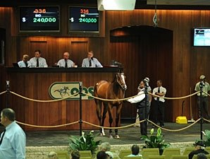 OBS Juvenile Sale Continues to Show Strength