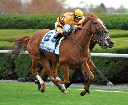 Making his first start in grade I company Oct. 4 since undergoing colic surgery, two-time Horse of the Year Wise Dan flies home to win the Shadwell Turf Mile (gr.IT).