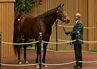 R Heat Lightning Fetches $1.6M at Keeneland