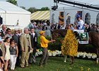 Shackleford after winning the 136th running of the Preakness Stakes.