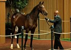 Bernardini filly brought $1.3 million during the second session of the September sale.