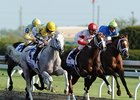 Blue Grass Stakes 2012