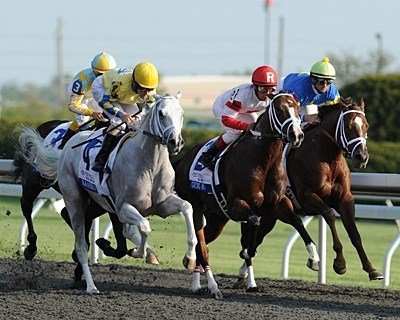 Hansen running in the Blue Grass Stakes.