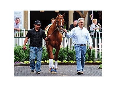 Trainer Steve Asmussen with Tapiture