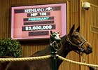 Naples Bay topped the Nov. 4 opening session at Keeneland's November breeding stock sale, selling for $3.6 million.