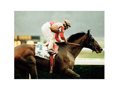 "1993 Belmont Stakes winner Colonial Affair<br><a target=""blank"" href=""http://photos.bloodhorse.com/Classics/Classic-Photos/22651042_hrMBZZ#!i=2474998554&k=TWhJR6d"">Order This Photo</a>"