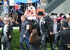 Black Caviar World's Top-Ranked Horse