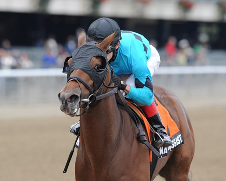 Miss Narcissist wins the Joseph A. Gimma Stakes