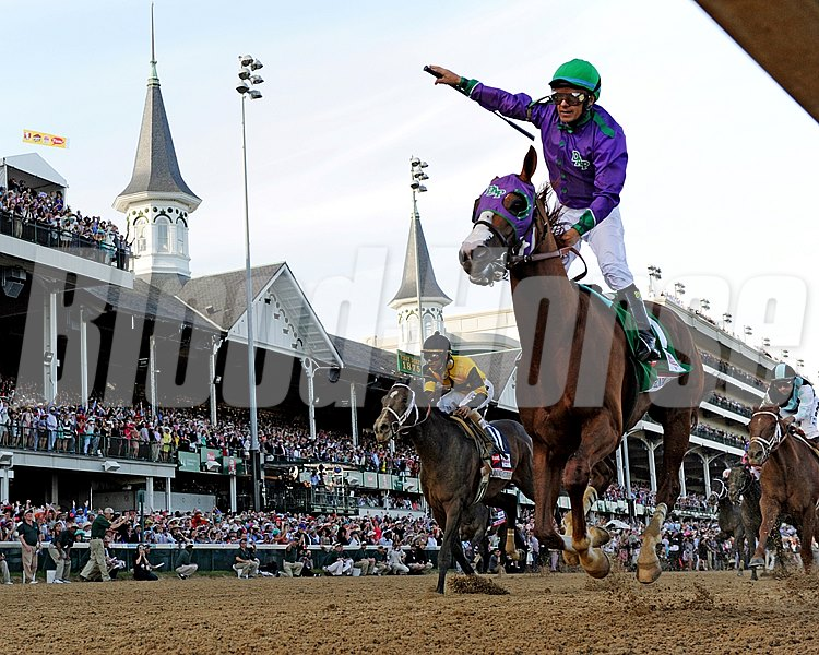"""This horse just loves to run,"" Coburn said of California Chrome. ""To see this horse win the Kentucky Derby, I have no words right now, except we've got another California-bred to win the Kentucky Derby."""