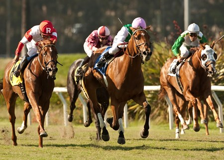 Emollient and jockey Mike Smith (middle) outleg Emotional Kitten (left) and Macha (right) to win the Grade I $350,000 American Oaks at Betfair Hollywood Park, Inglewood CA.