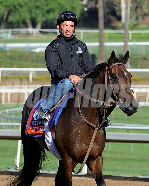 Caption:  Rusty Slipper with Aaron Gryder for trainer Graham Motion.