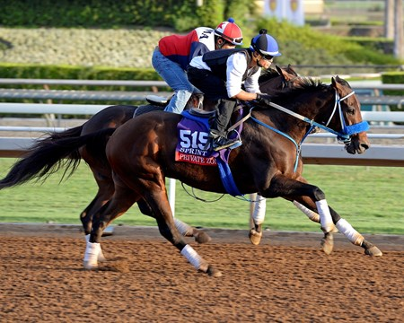 Caption:  Private Zone