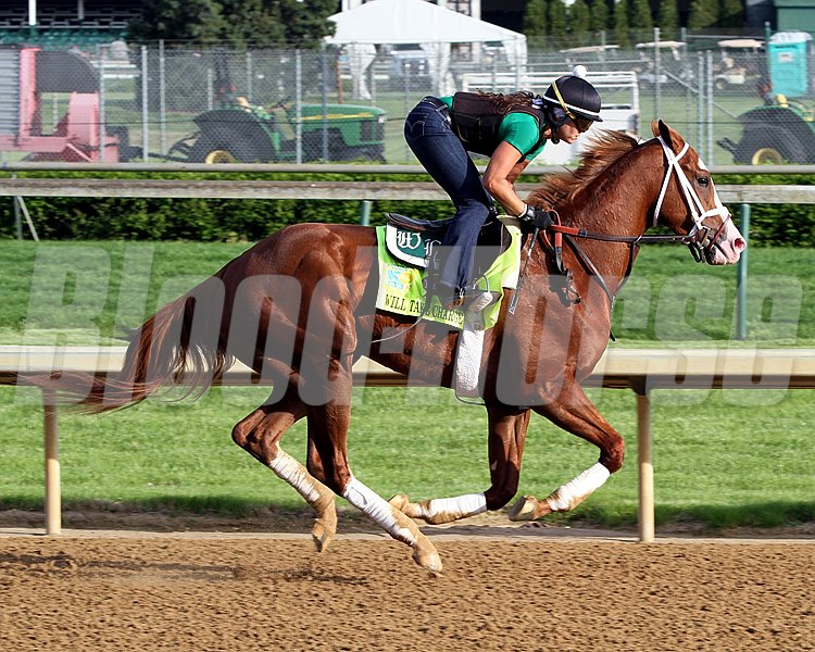 Will Take Charge on the track at Churchill Downs on May 2, 2013.