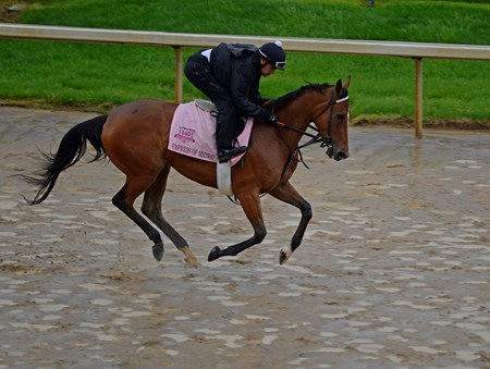Caption: Empress of Midway gallops over the sloppy track.