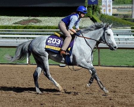 Caption:  L'Amour de Ma Vie