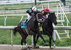 "Street Babe (left) fights off Mystery Train to win the Mineshaft.<br><a target=""blank"" href=""http://photos.bloodhorse.com/AtTheRaces-1/At-the-Races-2015/i-4J9vVmz"">Order This Photo</a>"